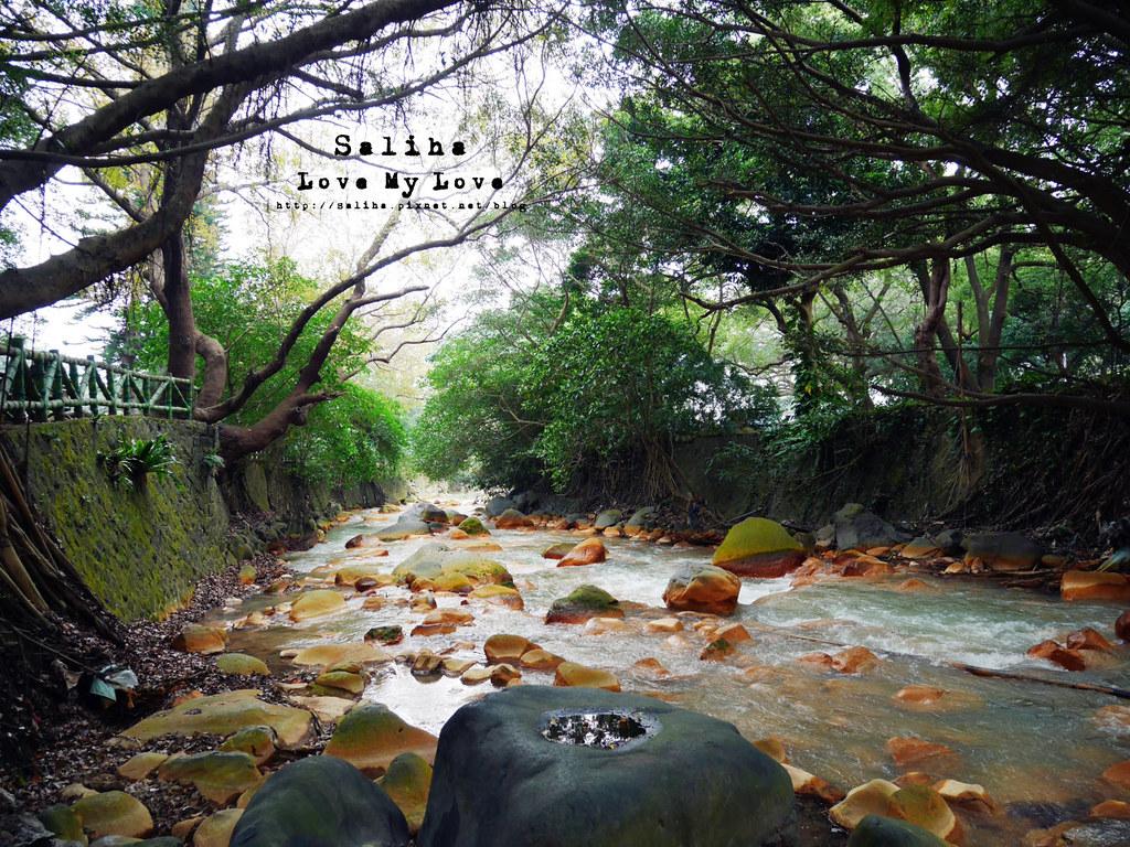 台北士林區天母一日遊行程推薦天母公園 (27)