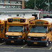Mineola Public Schools 139 (2017 Thomas Minotour Handibus Chevy) 128 (2017 BlueBird MicroBird G5 Handibus by Girardin Chevy) and 105 (2009? Thomas Minotour SRW GMC Savana)