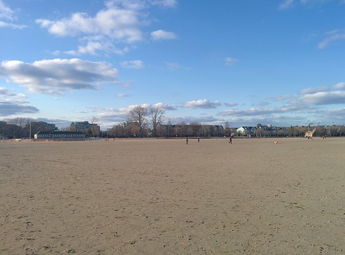 At Woodbine (1) #toronto #beaches #woodbinebeach #spring #latergram