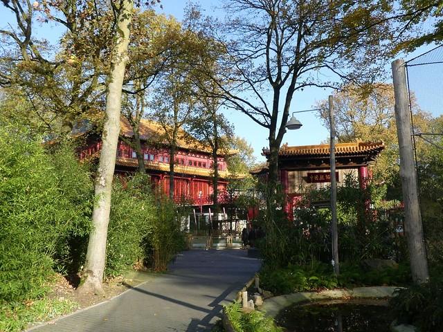 Pandasia, Ouwehands Dierenpark, Rhenen