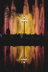 Fountain Lights Show