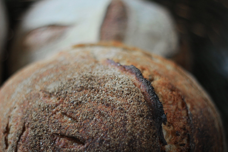Sourdough ear close
