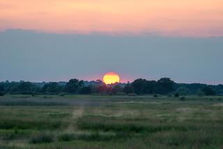 Sunset on Otmoor