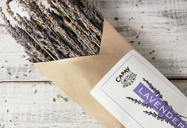 capay-organic-lavender