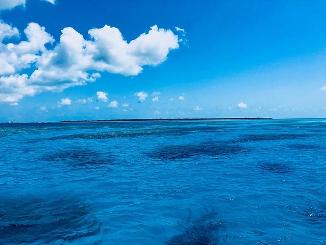 ここは波照間?いえ石垣島です。