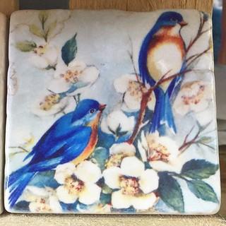 #birds #henribanks #marble