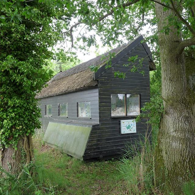 Wheatfen Nature Reserve, Surlingham, Norfolk UK.