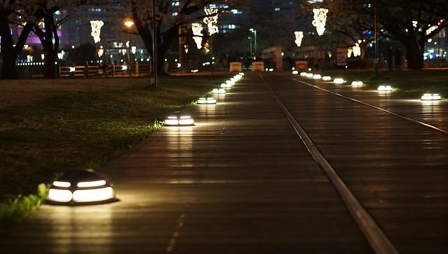 DSC07698みなとみらい夜景散歩