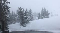 Буран на Горе Маунт Худ. A Snowstorm at the Mount Hood. C1892B59-1BF1-4078-89B9-BDA402A6D6EE