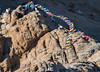 Flags-Shanti-Stupa-1