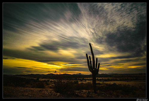 arizona clouds cloudscape cloudy desert estrellla goodyeararizona kenmickelphotography landscape landscapedesert outdoors sky sunsets backlighting backlightingphotography backlit backlitphotography nature photography silhouette silhouettes sunset goodyear unitedstates us