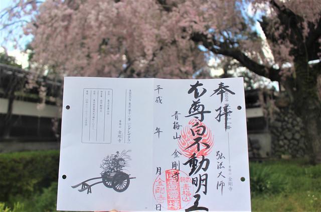 kongouji-gosyuin04036