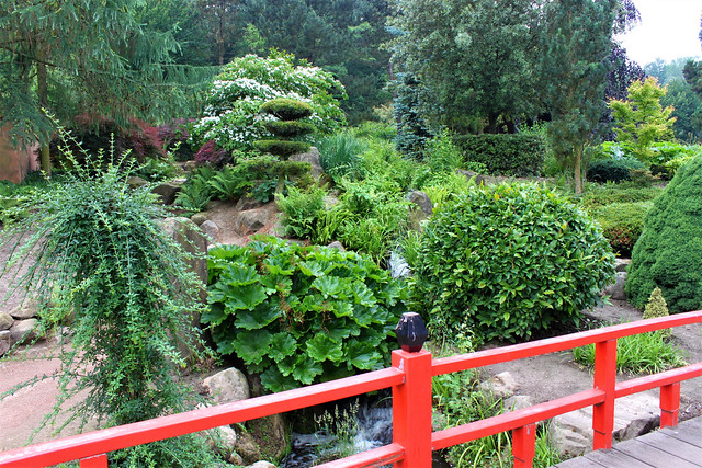 red bridge and plants in japanese garden