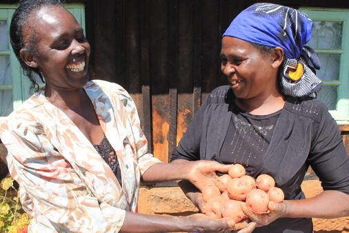 VPA Mary Kinya giving a farmer 1kg pack seed potato tubers to plant on her own plot in Mbuyene village Abothuguchi West