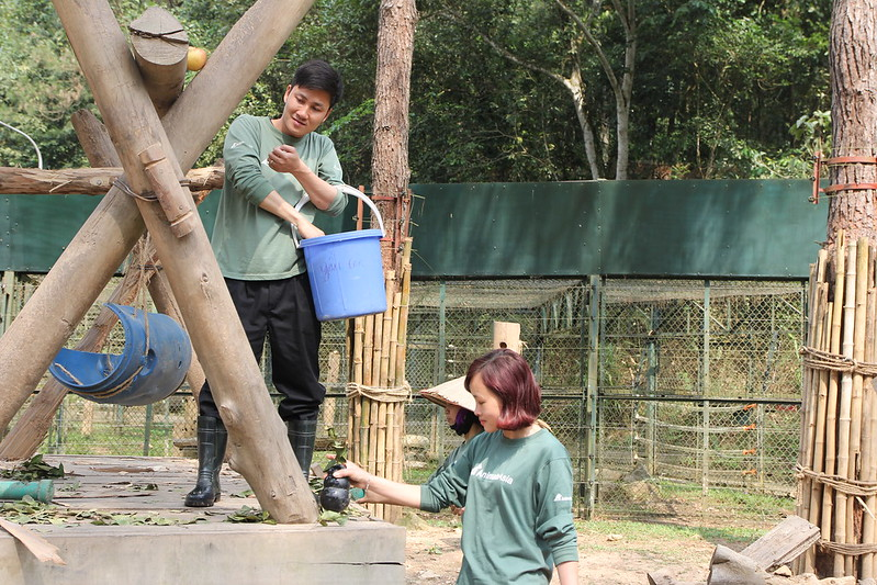 Hue put a toy for bears together with Animals Asia bear workers