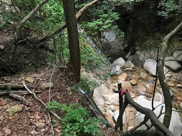 仙ヶ岳 白谷道 はしご