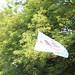 Flipped Flag