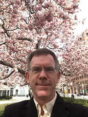 Paul matches the pink magnolia blossoms, spring in Washington, D.C.