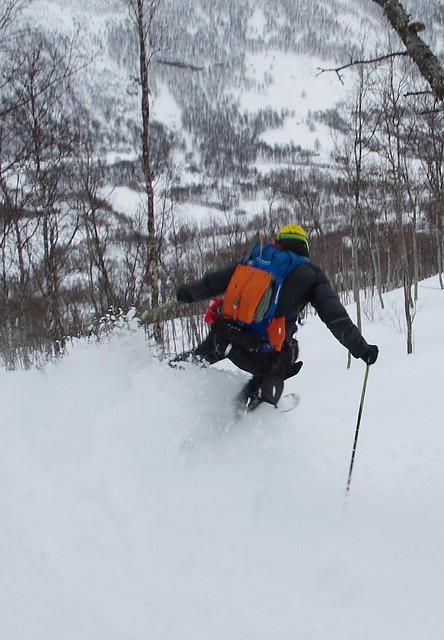 forêt de Tamok, Oteren, Norway