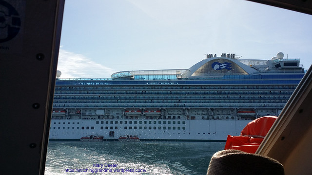 The Ruby Princess from a tender