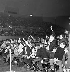 À la première rangée de l'aréna Maurice- Richard : concert des Beach Boys. 19 février 1965. VM94-S32-005. Archives de la Ville de Montréal.