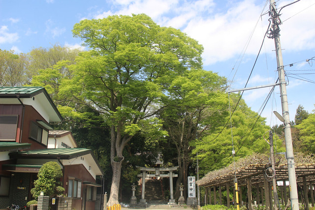 haijimahiyoshi-gosyuin04001