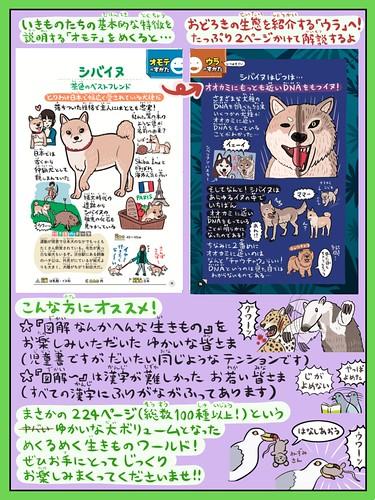 ぬまがさワタリのゆかいないきもの㊙図鑑3