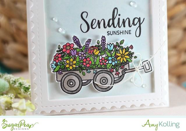 Sending sunshine2