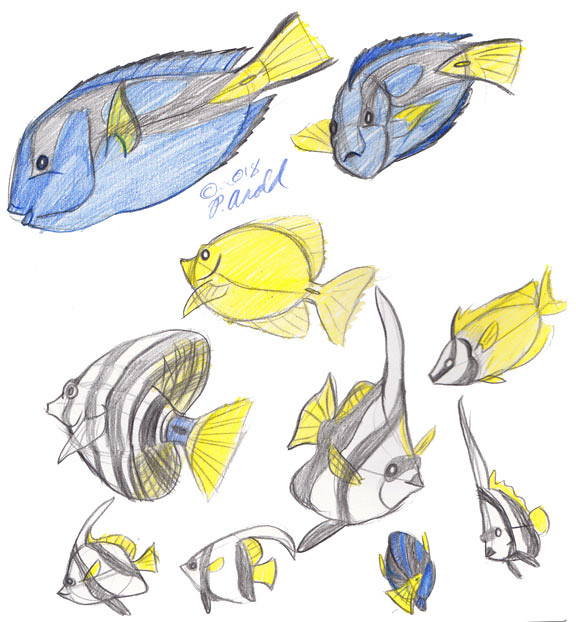 4.8.18 - Fish!