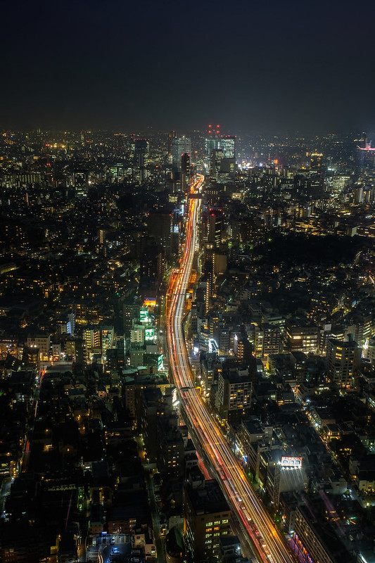 Tokyo From Above-8
