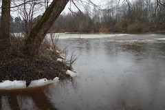 На реке Дрисса в Верхнедвинском районе еще лед