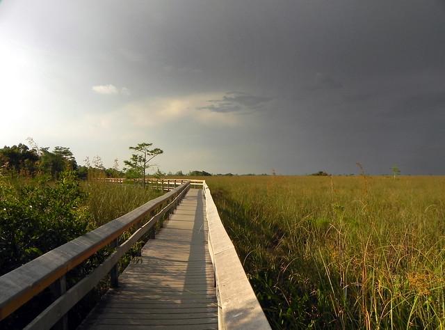 Florida, Nikon COOLPIX P100