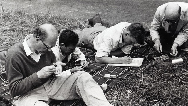 W. H. Dowdeswell, K. G. McWhirter, R. Creed and E. B. Ford studying Meadow Brown butterfly specimens, late 1960s