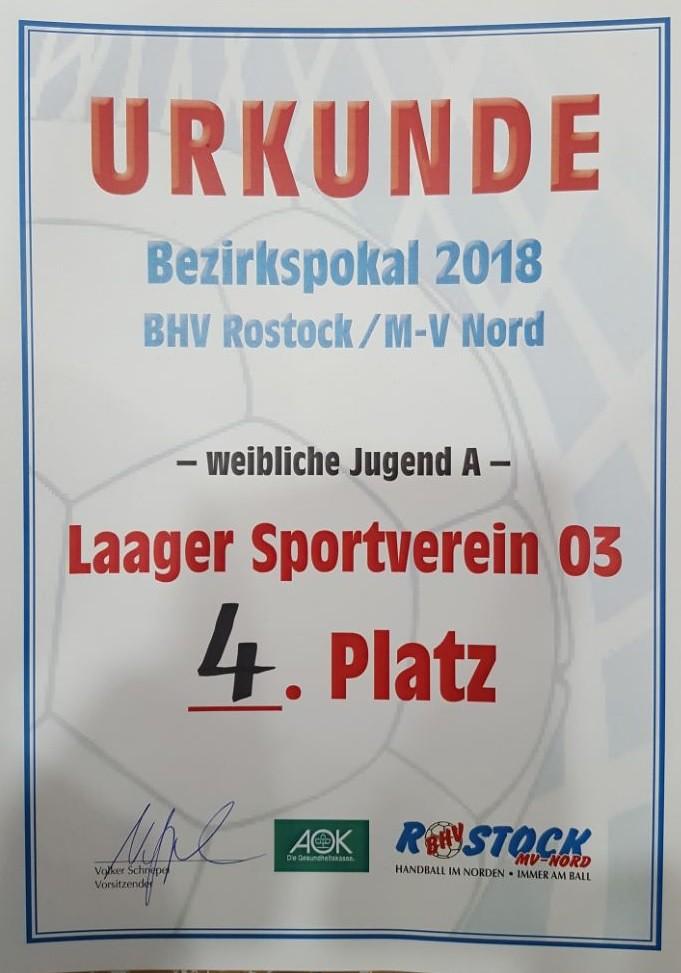 20180407-Handball-wJA