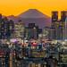 Shinjuku Magic Sunset by kbaranowski