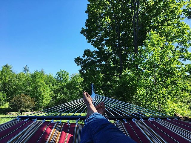 Omg the WiFi even reaches the hammock. I'm never leaving.