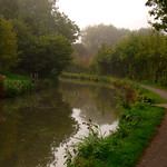 Autumn by a canal