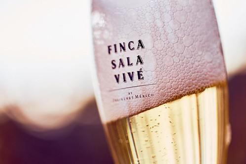 finca-sala-vivé-freixenet