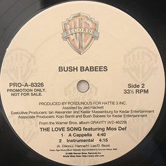 BUSH BABEES:THE LOVE SONG(LABEL SIDE-B)