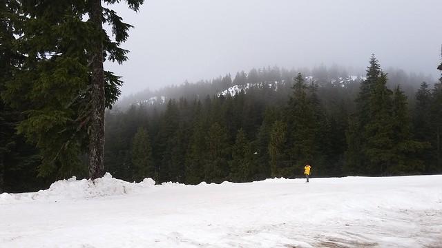 Soheil birding Mount Seymour