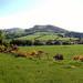 West Kilbride panoramic photos6