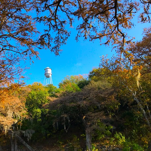 iphone7 iphoneseven iphoneography ioatx texas newbraunfels gruene texashillcountry watertower trees foliage fall autumn bluesky silver overhang grass tree park