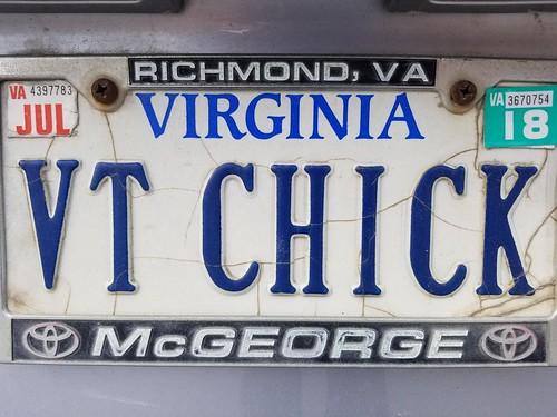VT Chick (Virginia Tech Chick)