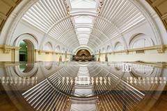 Retina   Victoria and Albert Museum, London, UK