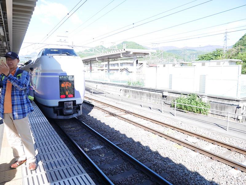 2016.05富士芝櫻