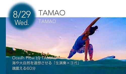8月29日(水) TAMAO