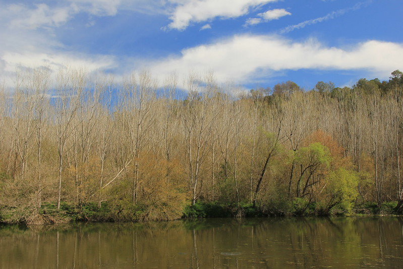 River Ser, Esponella