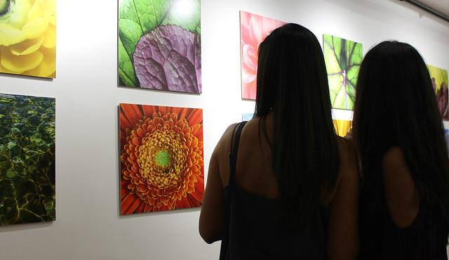 """Inauguración """"La Ecología de la Mirada"""" en sala Cable al Arte"""