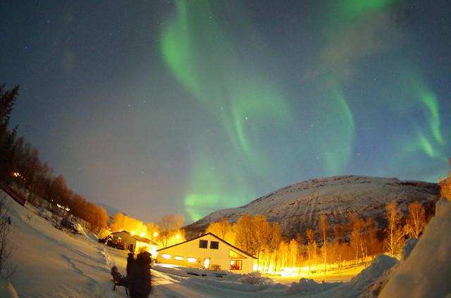 aurora lyngenalpis