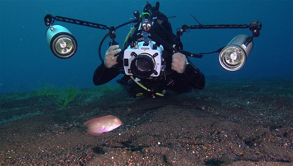 EUO © OCEANA Enrique Talledo 20180611_Outside of the Salina dock_28_Juan Cuetos photographing Xyrichthys novacula